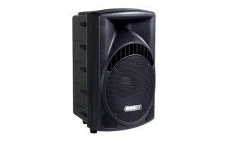 """Caja acustica ABS profesional de 2 vías 10"""""""